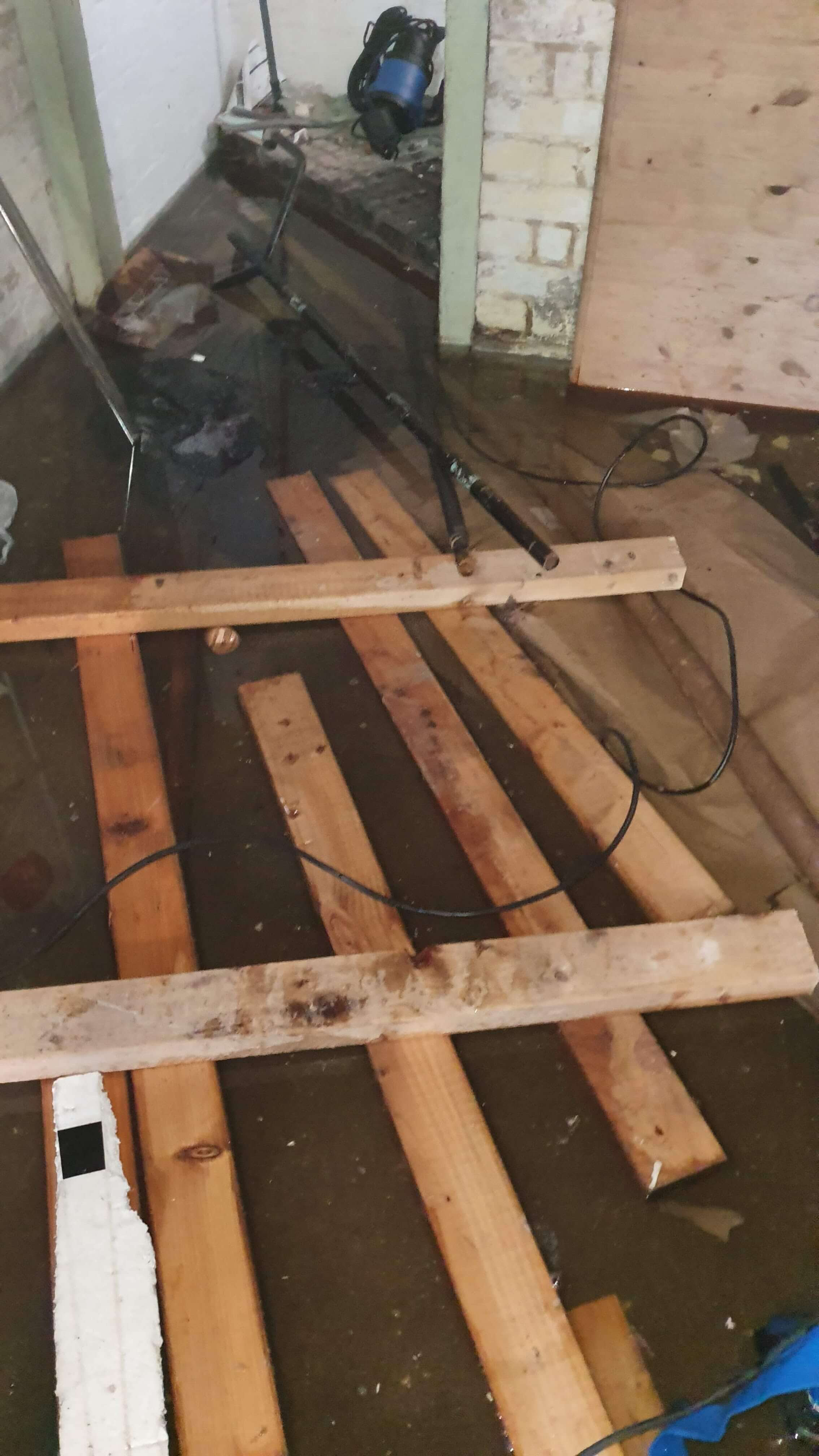 Flooded basement at residential property with water damaged property