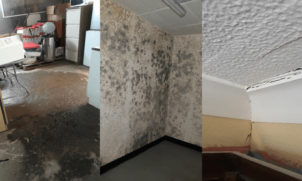 The Effects of Water Damage